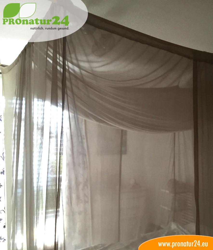baldachin einzelbett gegen elektrosmog emf schutz vor. Black Bedroom Furniture Sets. Home Design Ideas