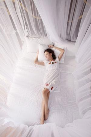 Geschützt schlafen in einem Baldachin