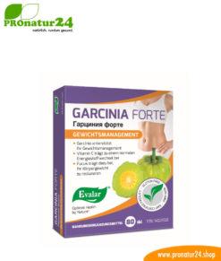 GARCINIA FORTE VON EVALAR (Гарциния форте). Glutenfrei, vegan, ohne Gentechnik, GMP.